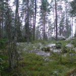 Купить участок в Финляндии